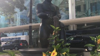 Statue ARVO 2018 - Hawaii convention center